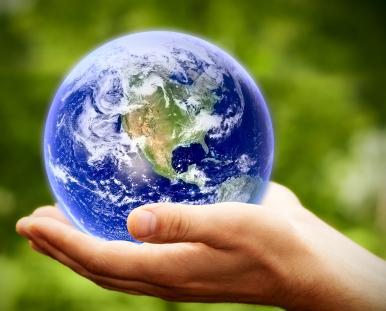 TRE® Online Global Certification Training - Module 1 (North Carolina, USA)